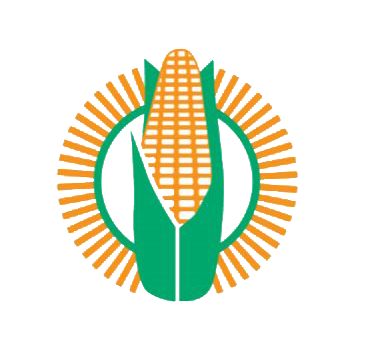 maize-trust-bursary-program